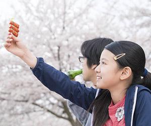 Film Still CLOSE-KNIT – Karera ga Honki de Amu toki wa von Naoko Ogigami mit Tôma Ikuta, Eiko Koike, Kenta Kiritani und Rin Kakihara; die 11-jährige Tomo (gespielt von Rin Kakihara) und ihr Onkels Makio (gespielt von Kenta Kiritani) machen ein Picknick unter japanischen Kirschblüten
