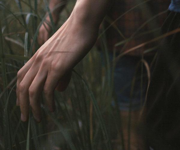 Film Still DIE HÜTTE AM SEE – A MOMENT IN THE REEDS, eine schwule Romanze zwischen einem Finnen und einem syrischen Flüchtling von Filmemacher Mikko Makela mit  Janne Puustinen, Boodi Kabbani und Mika Melender; eine Hand streicht durch hohes Gras